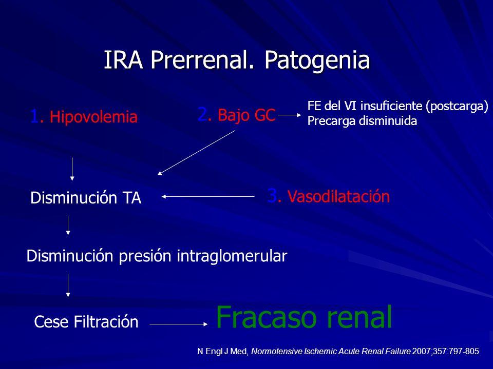 IRA Prerrenal. Patogenia 1. Hipovolemia Disminución TA Disminución presión intraglomerular Cese Filtración 2. Bajo GC FE del VI insuficiente (postcarg