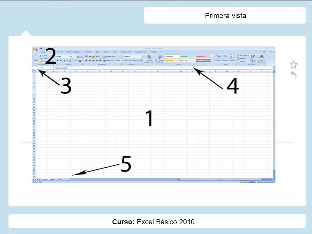 Curso: Excel Básico 2010 Introducción de la Información Formulas: Ingresadas directamente vía teclado.
