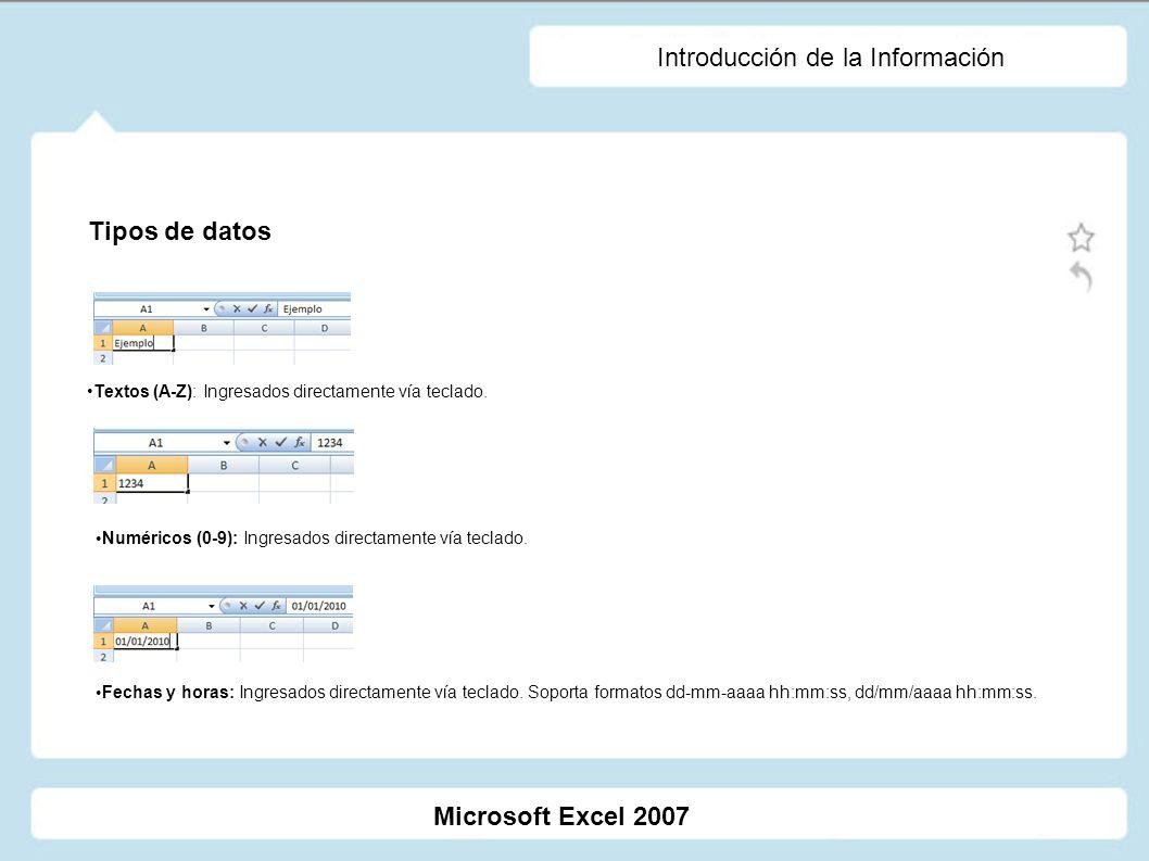 Introducción de la Información Textos (A-Z): Ingresados directamente vía teclado. Numéricos (0-9): Ingresados directamente vía teclado. Fechas y horas