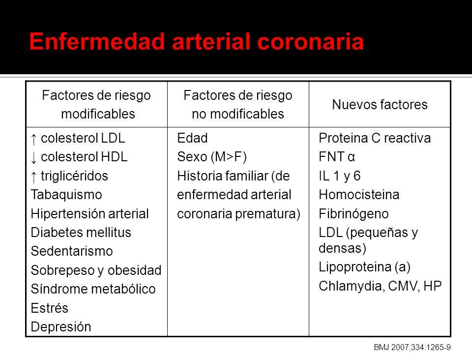 Factores de riesgo modificables Factores de riesgo no modificables Nuevos factores colesterol LDL colesterol HDL triglicéridos Tabaquismo Hipertensión