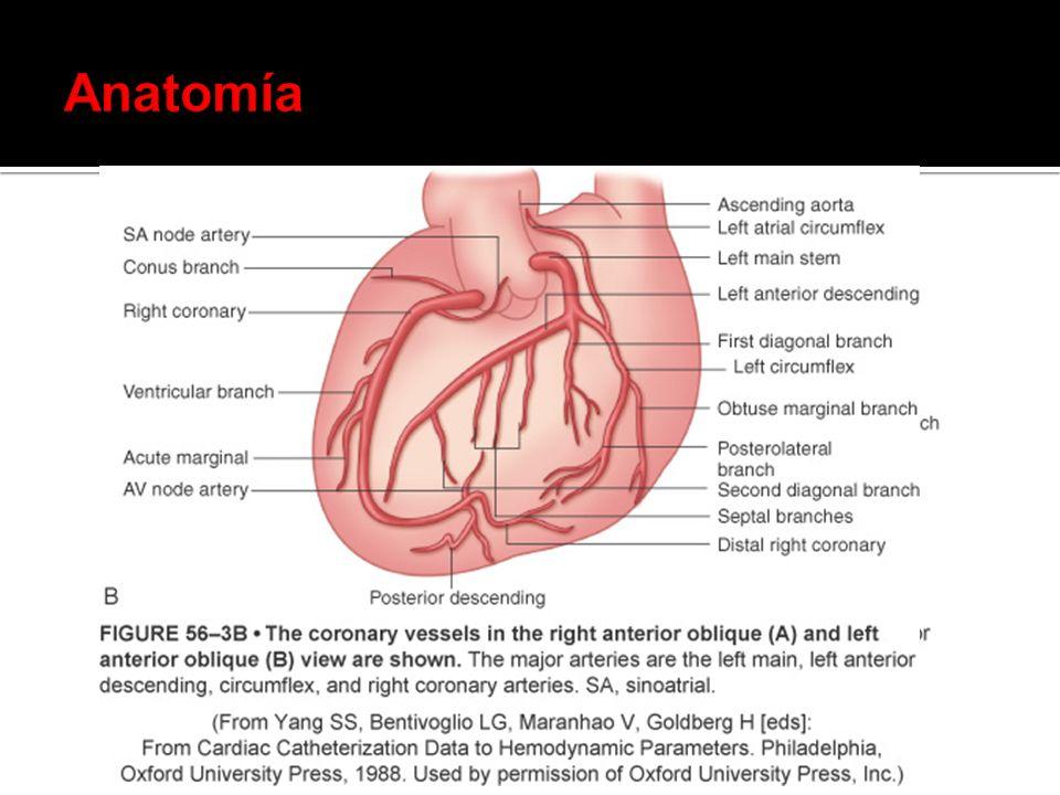 suplemento de O 2 Aterosclerosis coronaria (aterosclerosis significativa o trombosis coronaria).