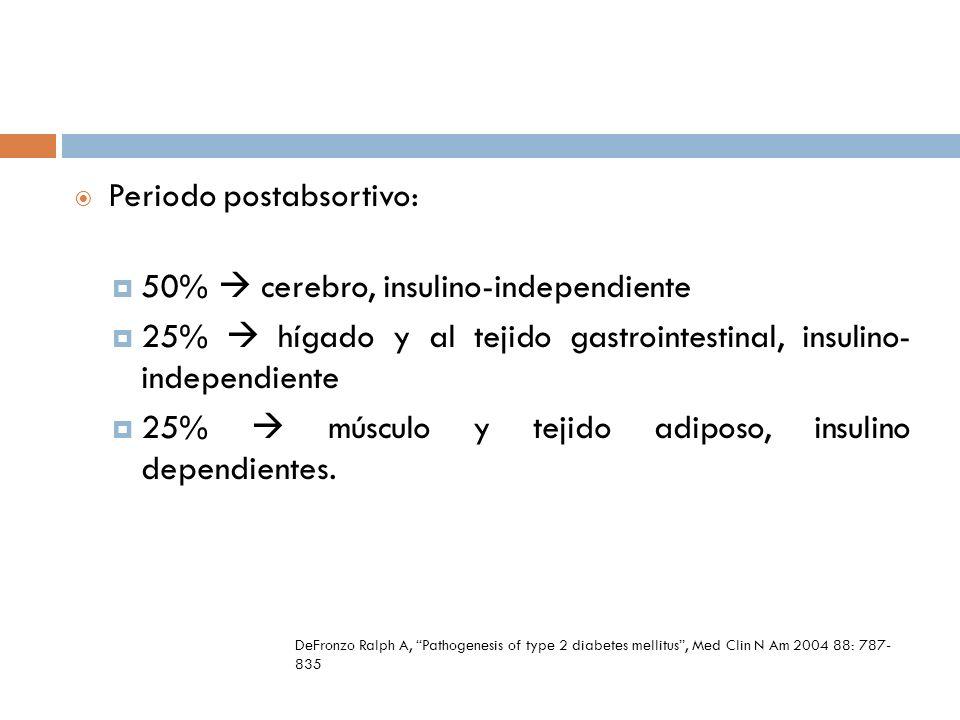 Periodo postabsortivo: 50% cerebro, insulino-independiente 25% hígado y al tejido gastrointestinal, insulino- independiente 25% músculo y tejido adipo