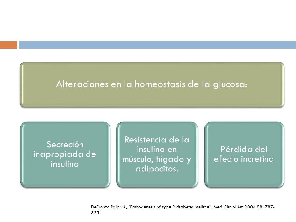 Alteraciones en la homeostasis de la glucosa: Secreción inapropiada de insulina Resistencia de la insulina en músculo, hígado y adipocitos. Pérdida de