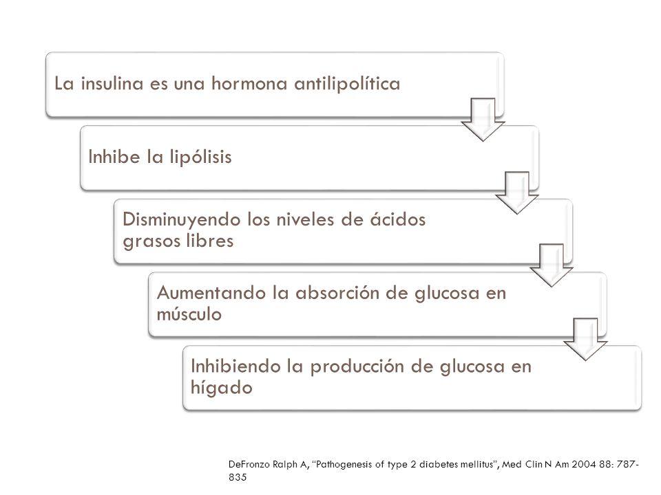 La insulina es una hormona antilipolíticaInhibe la lipólisis Disminuyendo los niveles de ácidos grasos libres Aumentando la absorción de glucosa en mú
