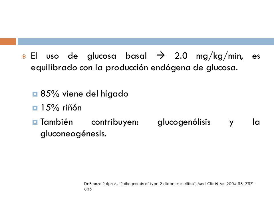 El uso de glucosa basal 2.0 mg/kg/min, es equilibrado con la producción endógena de glucosa. 85% viene del hígado 15% riñón También contribuyen: gluco