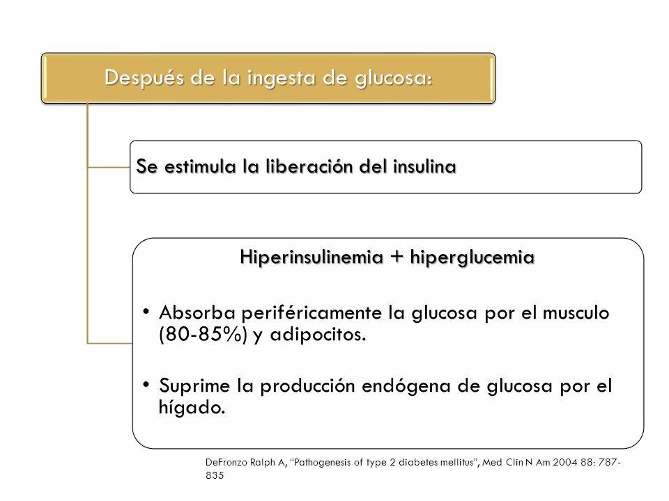 La insulina es una hormona antilipolíticaInhibe la lipólisis Disminuyendo los niveles de ácidos grasos libres Aumentando la absorción de glucosa en músculo Inhibiendo la producción de glucosa en hígado DeFronzo Ralph A, Pathogenesis of type 2 diabetes mellitus, Med Clin N Am 2004 88: 787- 835