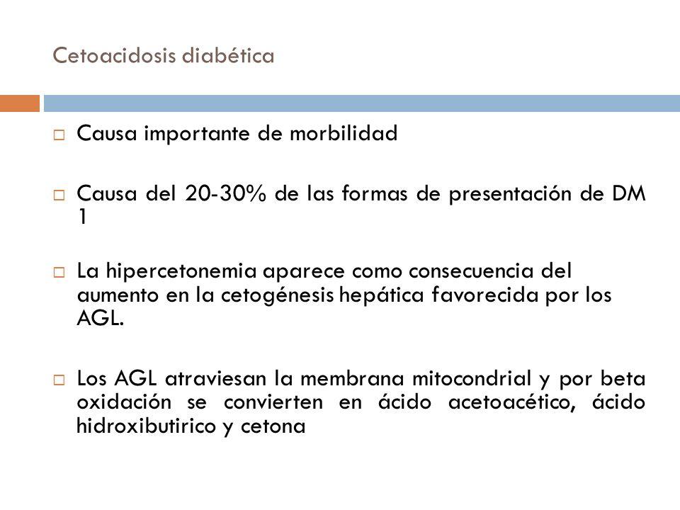 Cetoacidosis diabética Causa importante de morbilidad Causa del 20-30% de las formas de presentación de DM 1 La hipercetonemia aparece como consecuenc