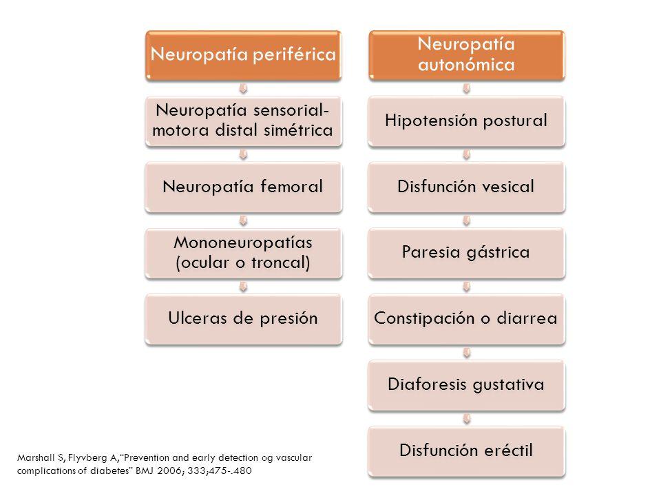 Neuropatía periférica Neuropatía sensorial- motora distal simétrica Neuropatía femoral Mononeuropatías (ocular o troncal) Ulceras de presión Neuropatí