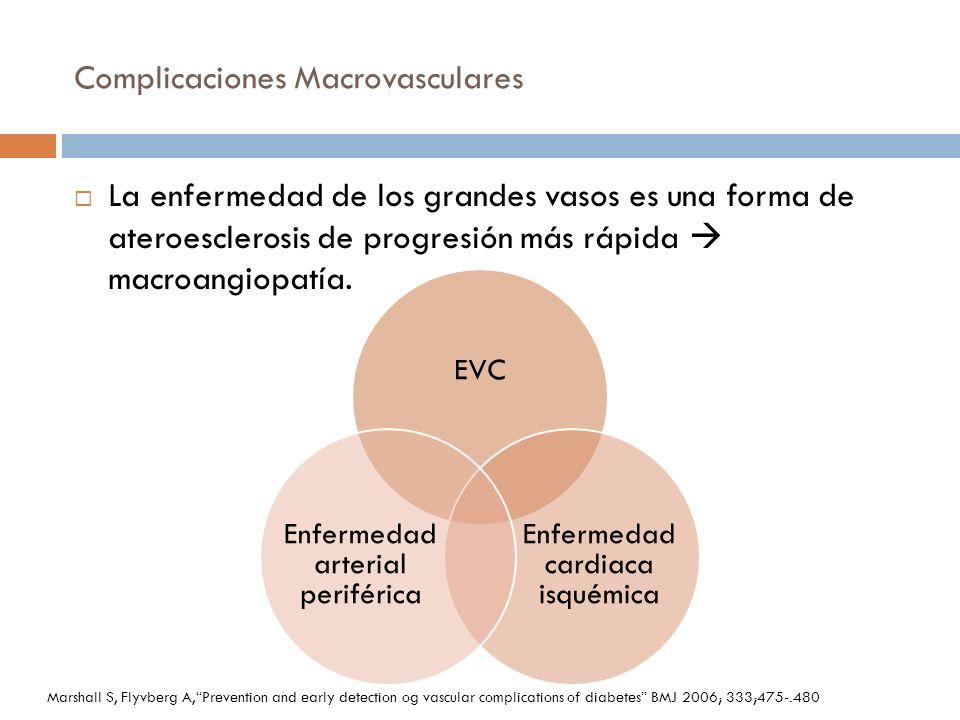 Complicaciones Macrovasculares La enfermedad de los grandes vasos es una forma de ateroesclerosis de progresión más rápida macroangiopatía. EVC Enferm