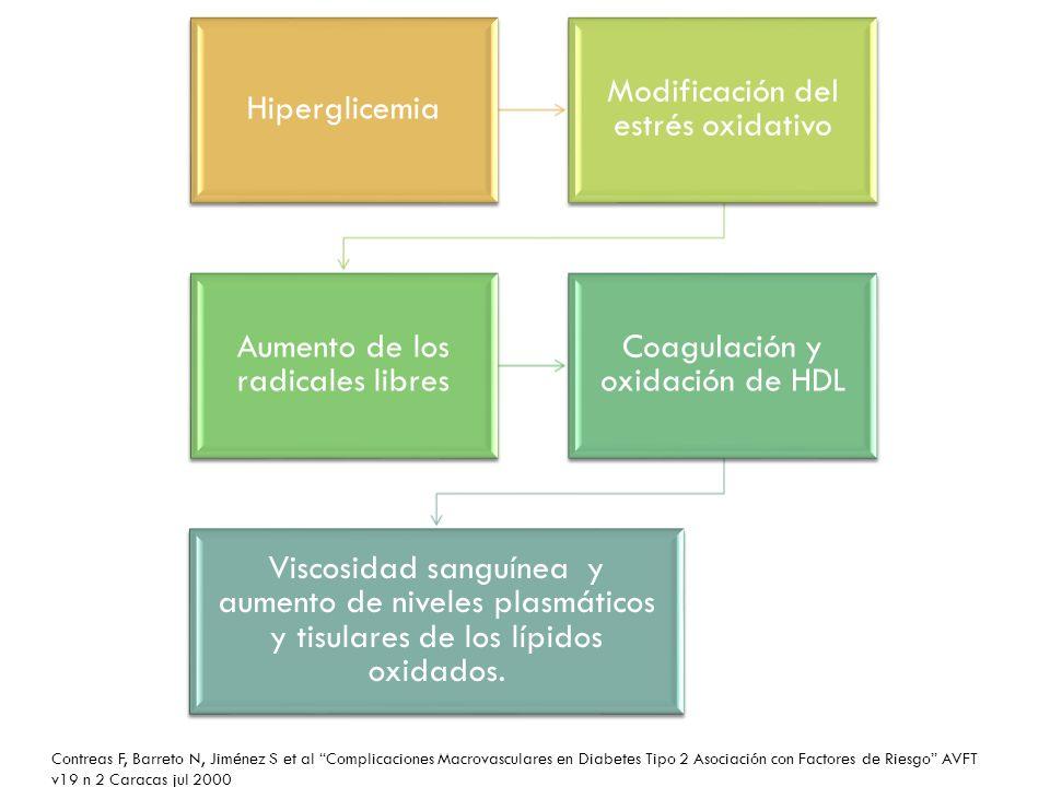 Hiperglicemia Modificación del estrés oxidativo Aumento de los radicales libres Coagulación y oxidación de HDL Viscosidad sanguínea y aumento de nivel