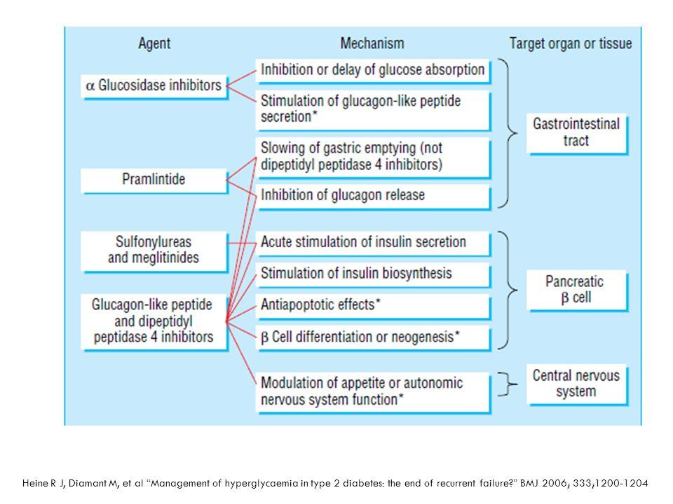 Heine R J, Diamant M, et al Management of hyperglycaemia in type 2 diabetes: the end of recurrent failure? BMJ 2006; 333;1200-1204
