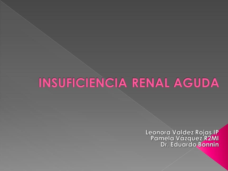 Síndrome clínico caracterizado por la disminución rápida y generalmente reversible de la función renal.