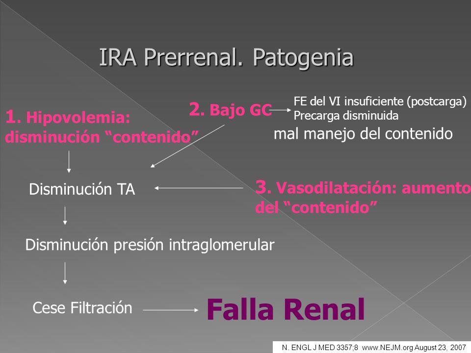 IRA Prerrenal. Patogenia 1. Hipovolemia: disminución contenido Disminución TA Disminución presión intraglomerular Cese Filtración 2. Bajo GC FE del VI