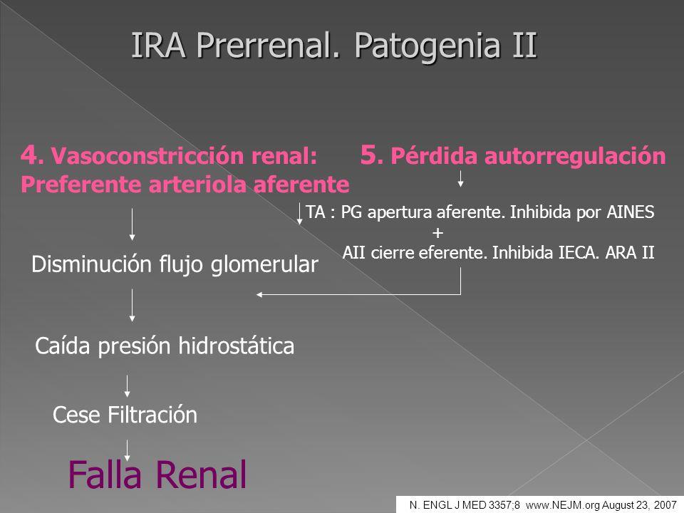 IRA Prerrenal. Patogenia II 4. Vasoconstricción renal: Preferente arteriola aferente Disminución flujo glomerular Caída presión hidrostática Cese Filt