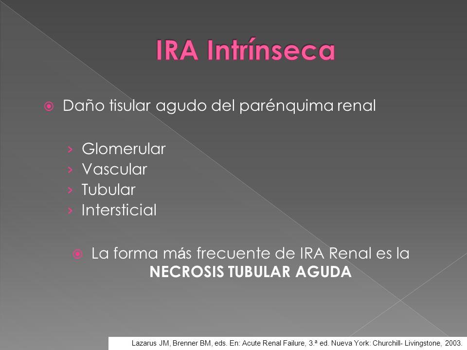 Daño tisular agudo del parénquima renal Glomerular Vascular Tubular Intersticial La forma m á s frecuente de IRA Renal es la NECROSIS TUBULAR AGUDA La