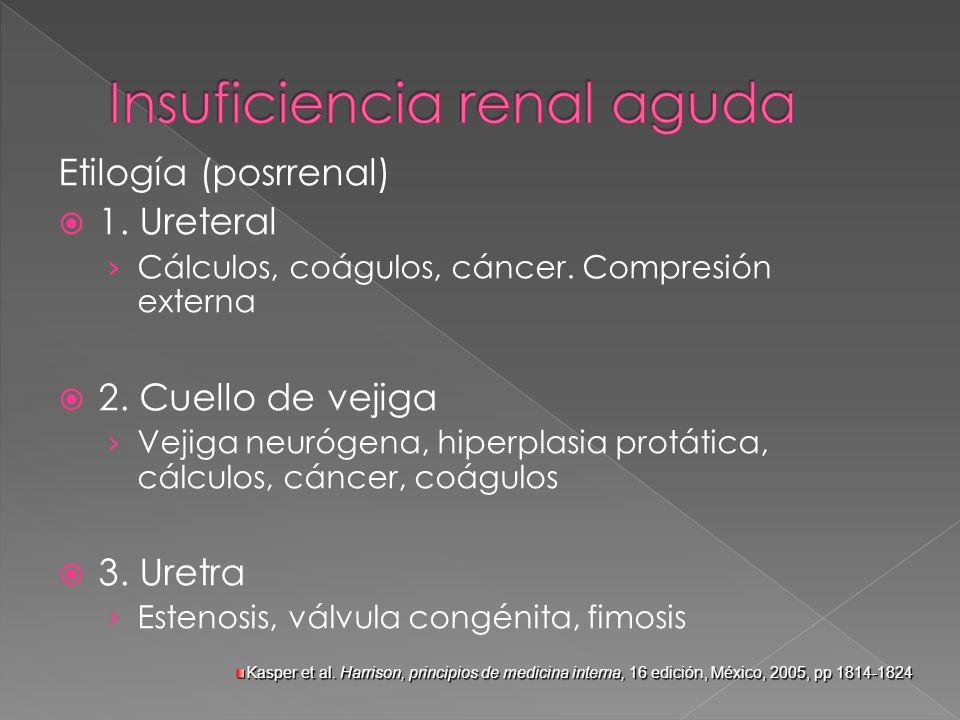 Etilogía (posrrenal) 1. Ureteral Cálculos, coágulos, cáncer. Compresión externa 2. Cuello de vejiga Vejiga neurógena, hiperplasia protática, cálculos,
