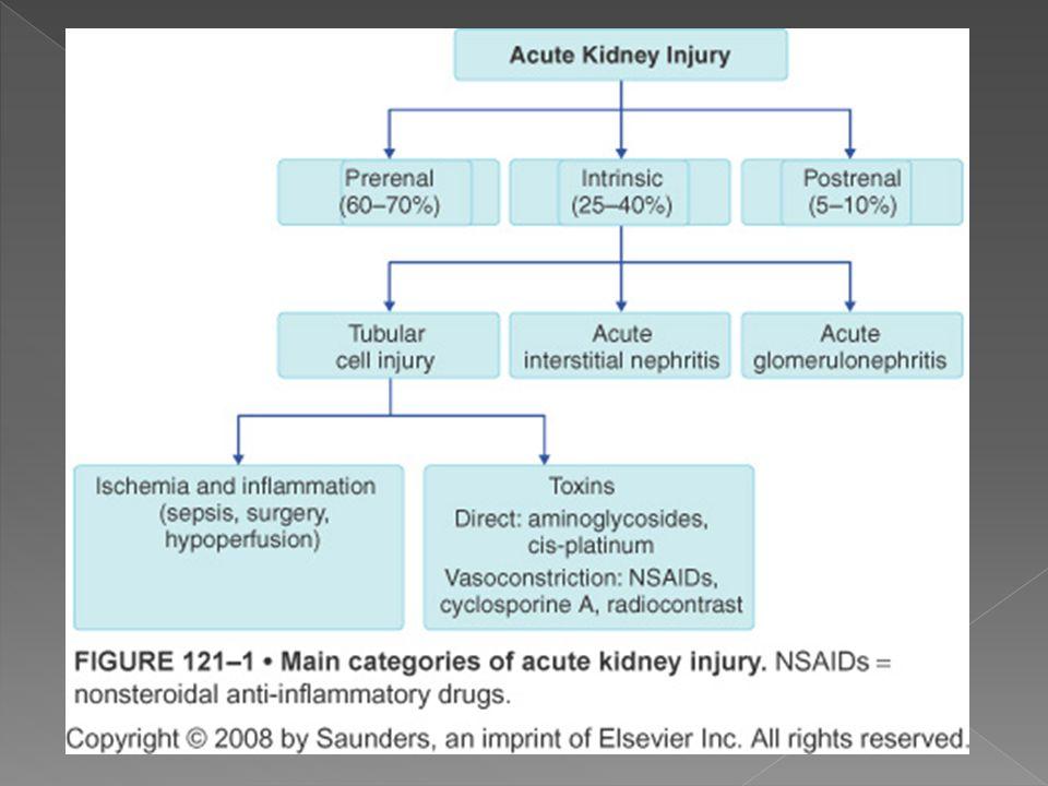 Disminuci ó n en la resistencia arteriolar Cambios estructurales en las arteriolas aferentes y peque ñ as arter í as.