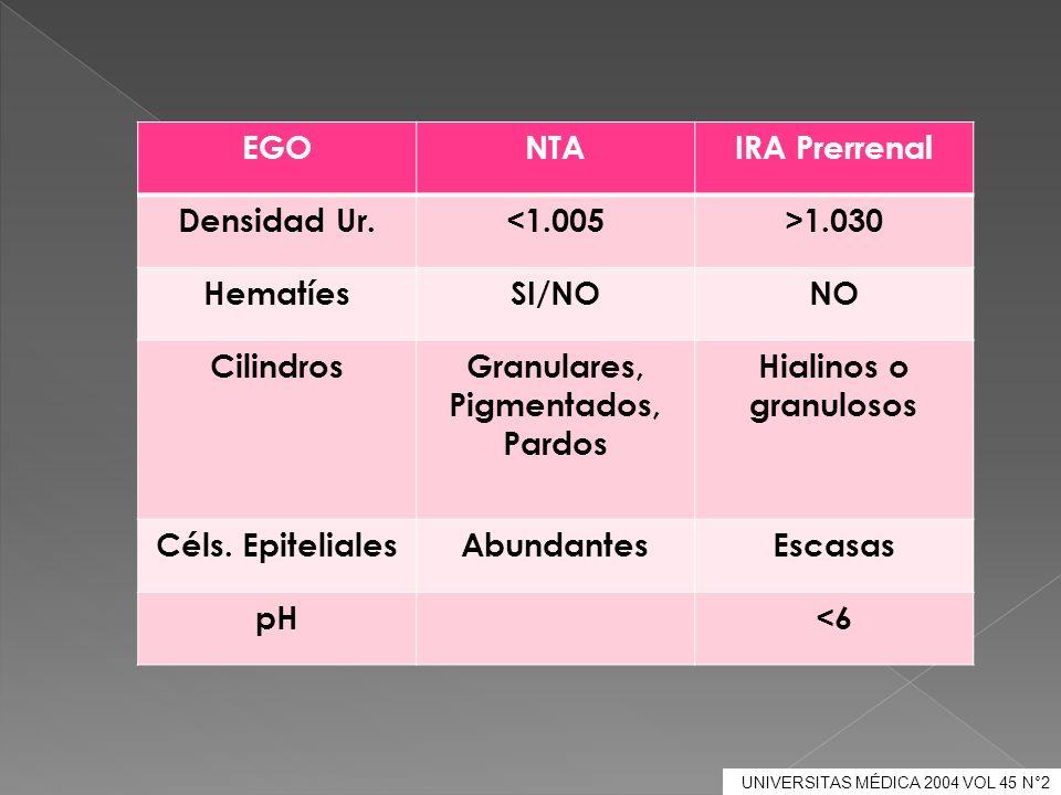 UNIVERSITAS MÉDICA 2004 VOL 45 N°2 EGONTAIRA Prerrenal Densidad Ur.<1.005>1.030 HematíesSI/NONO CilindrosGranulares, Pigmentados, Pardos Hialinos o gr