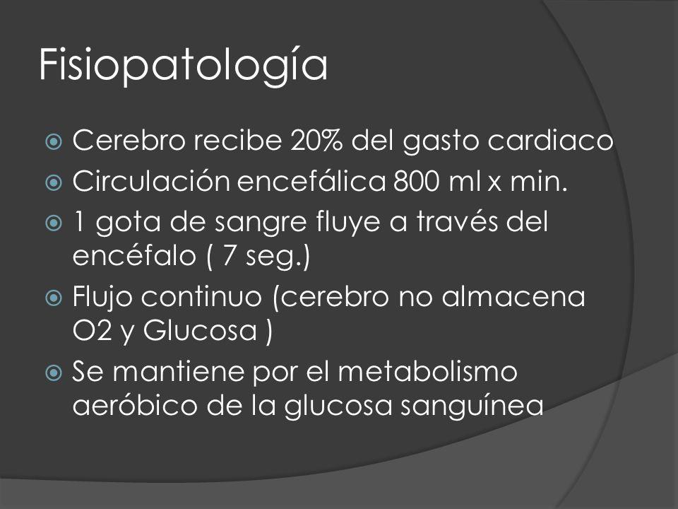 Fisiopatología Cerebro recibe 20% del gasto cardiaco Circulación encefálica 800 ml x min. 1 gota de sangre fluye a través del encéfalo ( 7 seg.) Flujo