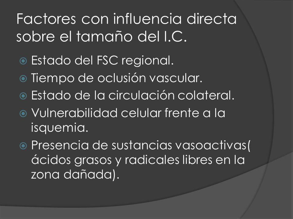 Factores con influencia directa sobre el tamaño del I.C. Estado del FSC regional. Tiempo de oclusión vascular. Estado de la circulación colateral. Vul