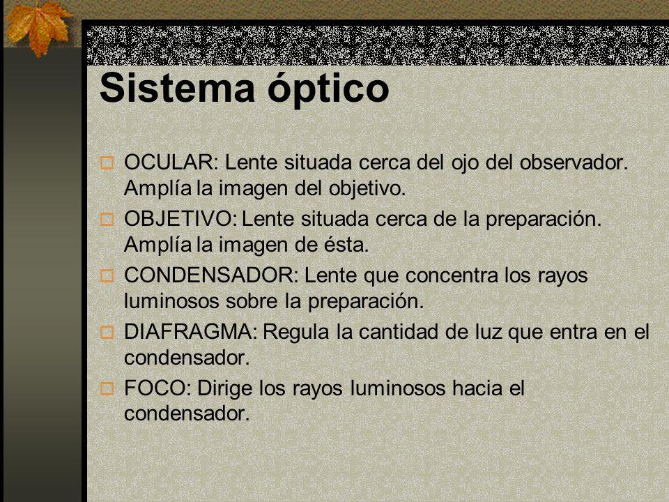 Sistema mecánico SOPORTE: Mantiene la parte óptica.
