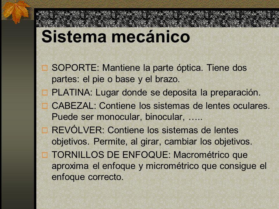 MANEJO Y USO DEL MICROSCOPIO ÓPTICO 1.