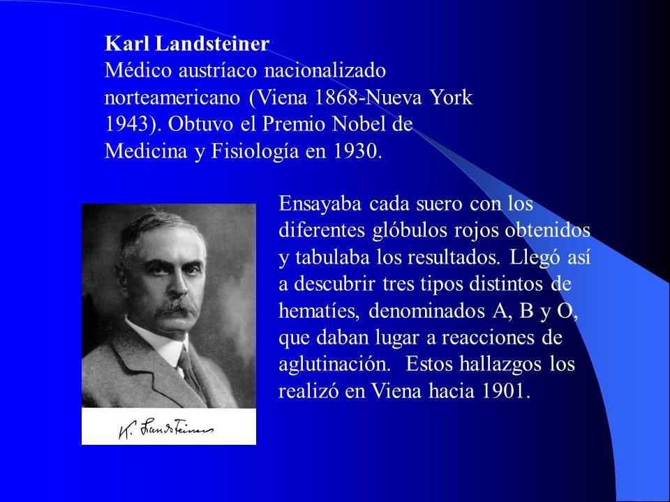 Karl Landsteiner Médico austríaco nacionalizado norteamericano (Viena 1868-Nueva York 1943). Obtuvo el Premio Nobel de Medicina y Fisiología en 1930.