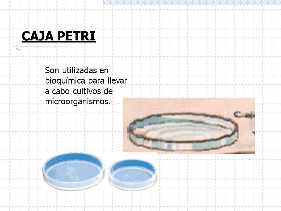 CAJA PETRI Son utilizadas en bioquímica para llevar a cabo cultivos de microorganismos.