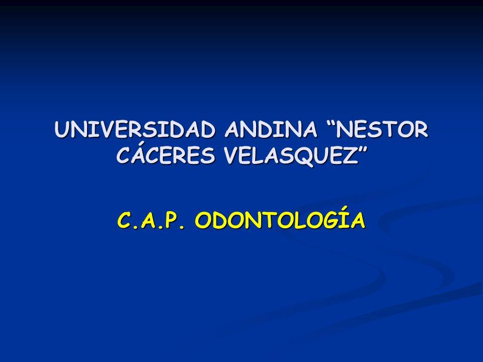UNIVERSIDAD ANDINA NESTOR CÁCERES VELASQUEZ C.A.P. ODONTOLOGÍA
