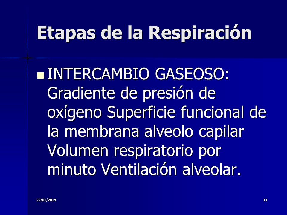 22/01/201411 Etapas de la Respiración INTERCAMBIO GASEOSO: Gradiente de presión de oxígeno Superficie funcional de la membrana alveolo capilar Volumen
