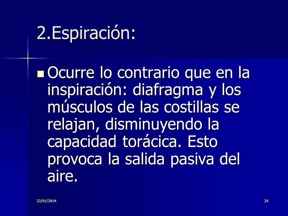 22/01/201424 2.Espiración: Ocurre lo contrario que en la inspiración: diafragma y los músculos de las costillas se relajan, disminuyendo la capacidad