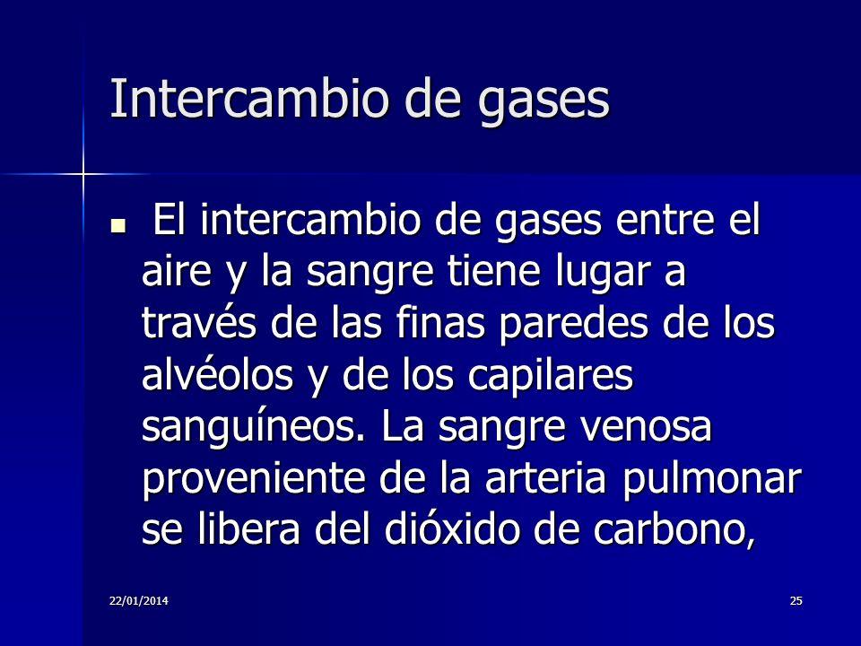 22/01/201425 Intercambio de gases El intercambio de gases entre el aire y la sangre tiene lugar a través de las finas paredes de los alvéolos y de los