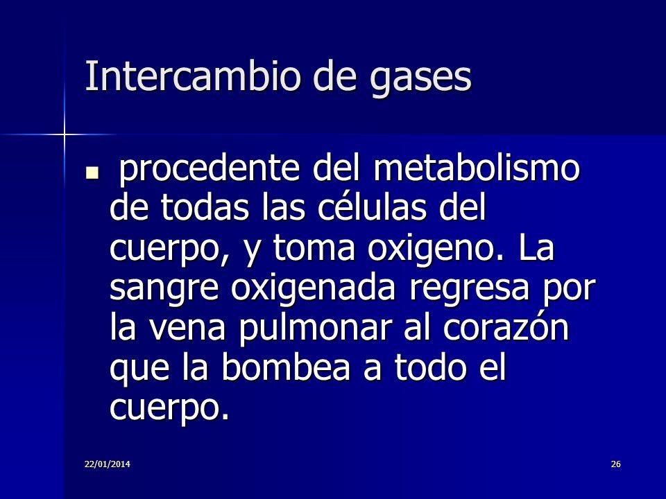 22/01/201426 Intercambio de gases procedente del metabolismo de todas las células del cuerpo, y toma oxigeno. La sangre oxigenada regresa por la vena