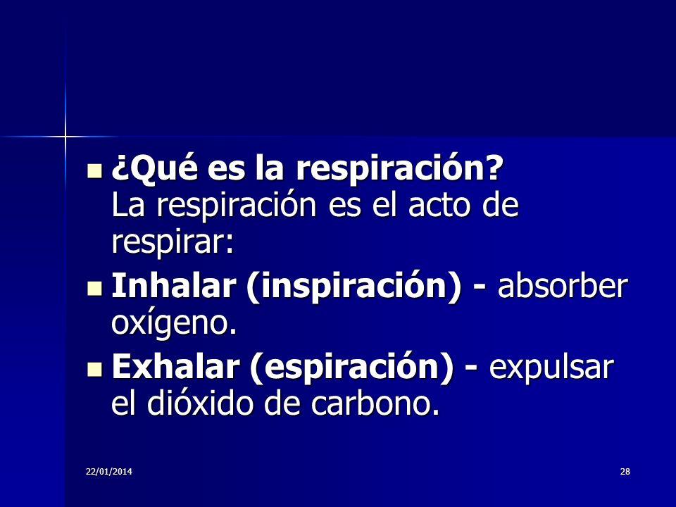 22/01/201428 ¿Qué es la respiración? La respiración es el acto de respirar: ¿Qué es la respiración? La respiración es el acto de respirar: Inhalar (in