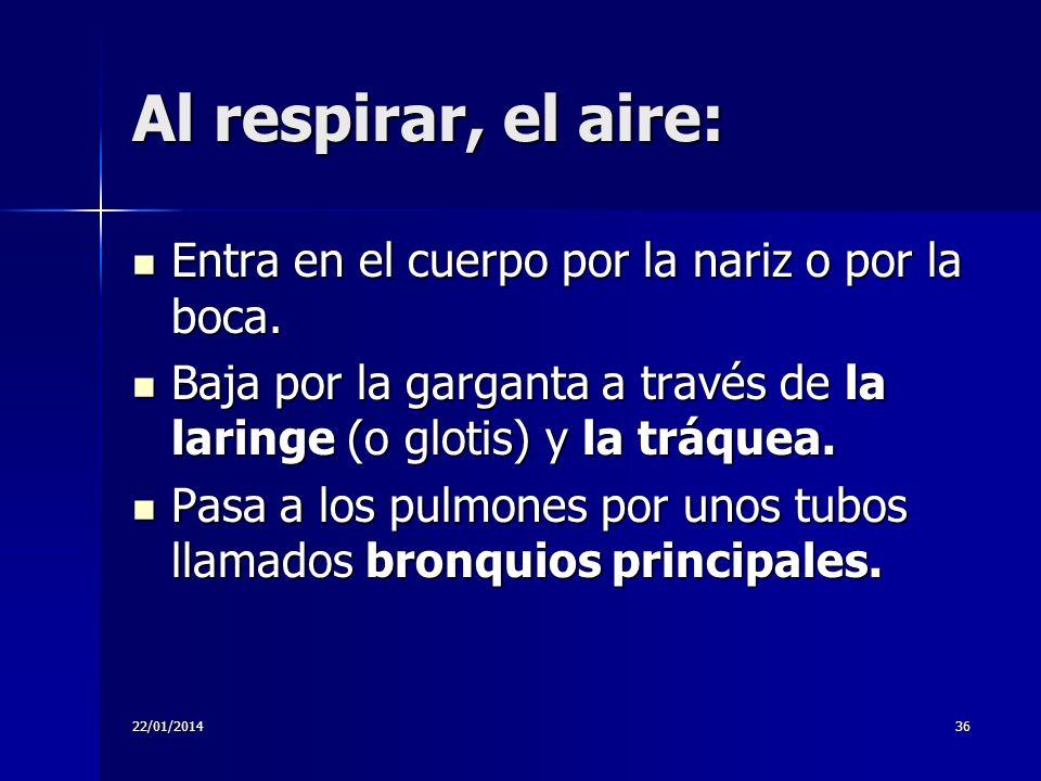 22/01/201436 Al respirar, el aire: Entra en el cuerpo por la nariz o por la boca. Entra en el cuerpo por la nariz o por la boca. Baja por la garganta