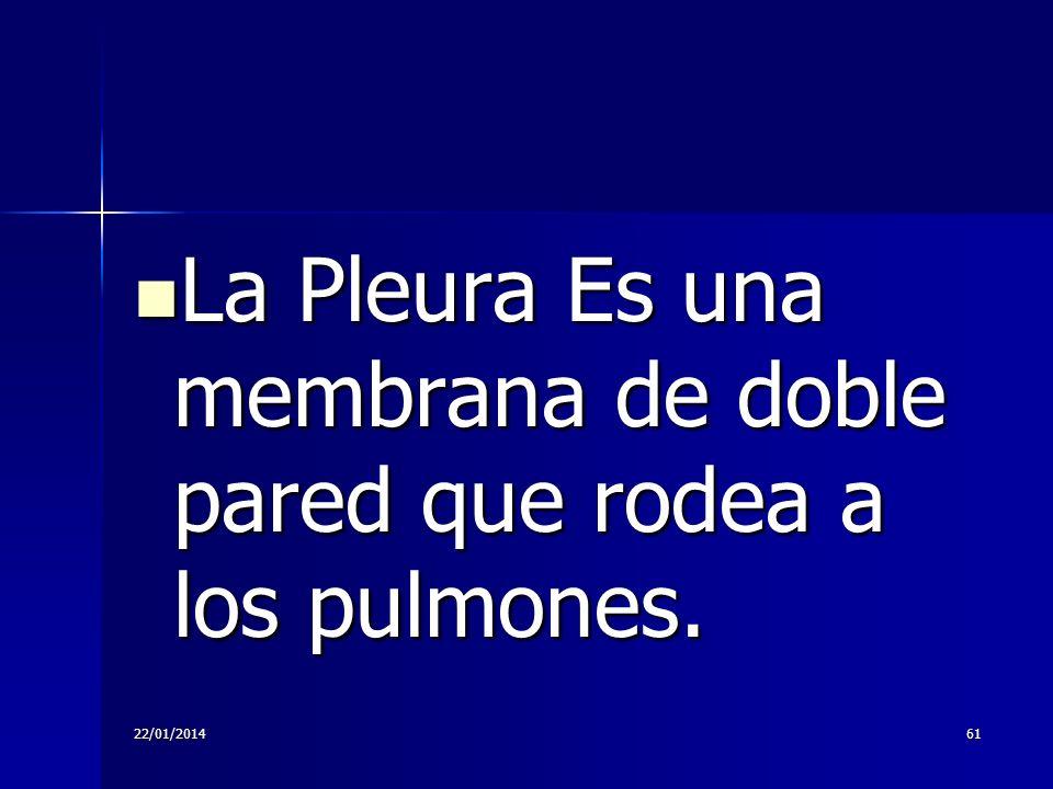 22/01/201461 La Pleura Es una membrana de doble pared que rodea a los pulmones. La Pleura Es una membrana de doble pared que rodea a los pulmones.