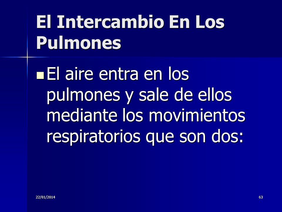 22/01/201463 El Intercambio En Los Pulmones El aire entra en los pulmones y sale de ellos mediante los movimientos respiratorios que son dos: El aire