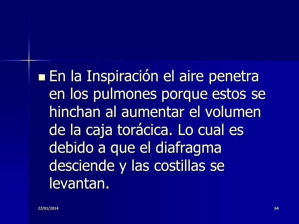 22/01/201464 En la Inspiración el aire penetra en los pulmones porque estos se hinchan al aumentar el volumen de la caja torácica. Lo cual es debido a
