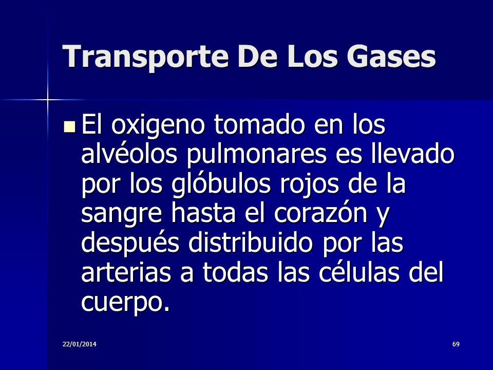 22/01/201469 Transporte De Los Gases El oxigeno tomado en los alvéolos pulmonares es llevado por los glóbulos rojos de la sangre hasta el corazón y de