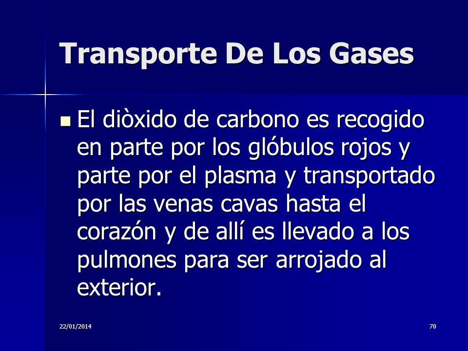 22/01/201470 Transporte De Los Gases El diòxido de carbono es recogido en parte por los glóbulos rojos y parte por el plasma y transportado por las ve