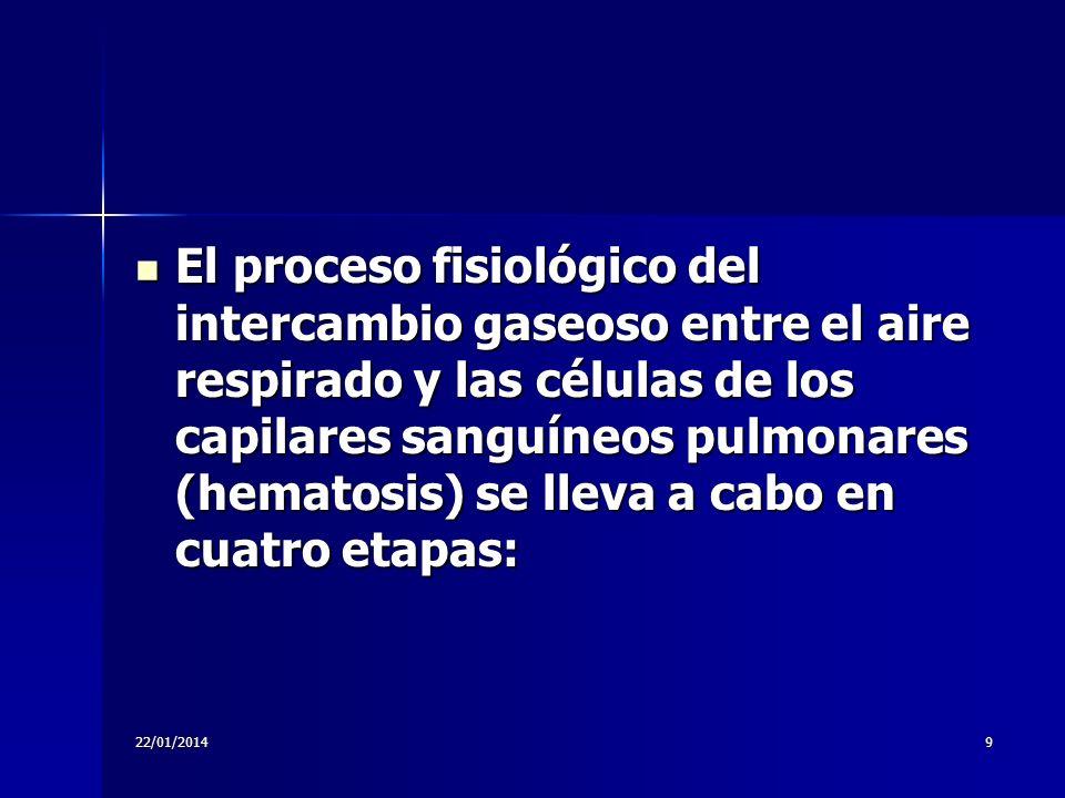22/01/20149 El proceso fisiológico del intercambio gaseoso entre el aire respirado y las células de los capilares sanguíneos pulmonares (hematosis) se
