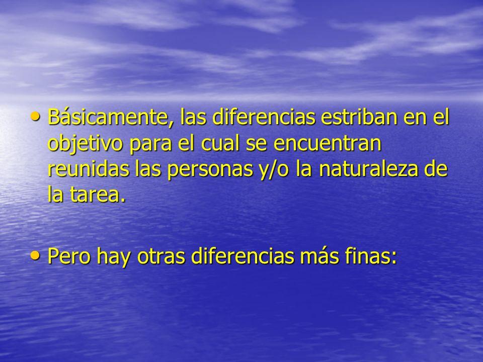 Básicamente, las diferencias estriban en el objetivo para el cual se encuentran reunidas las personas y/o la naturaleza de la tarea. Básicamente, las