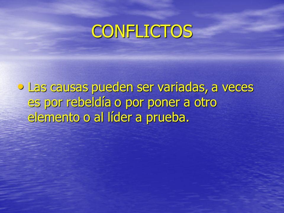 CONFLICTOS Las causas pueden ser variadas, a veces es por rebeldía o por poner a otro elemento o al líder a prueba. Las causas pueden ser variadas, a