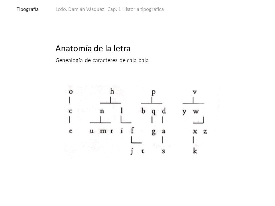 Anatomía de la letra TipografíaLcdo. Damián Vásquez Cap.