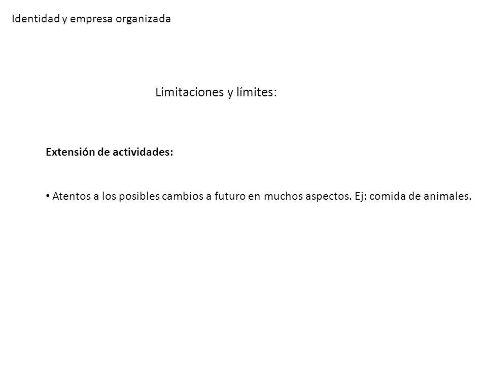 Identidad y empresa organizada Limitaciones y límites: Extensión de actividades: Atentos a los posibles cambios a futuro en muchos aspectos. Ej: comid