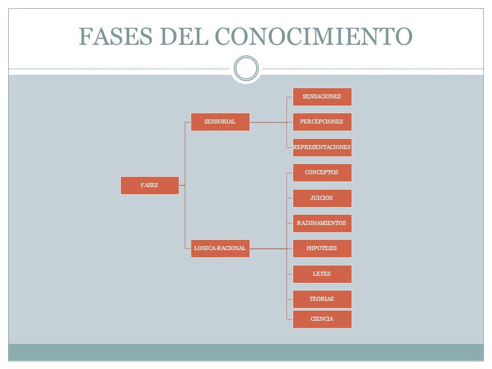 FASES DEL CONOCIMIENTO FASES SENSORIAL SENSACIONES PERCEPCIONES REPRESENTACIONES LOGICA-RACIONAL CONCEPTOS JUICIOS RAZONAMIENTOS HIPOTESIS LEYES TEORIAS CIENCIA