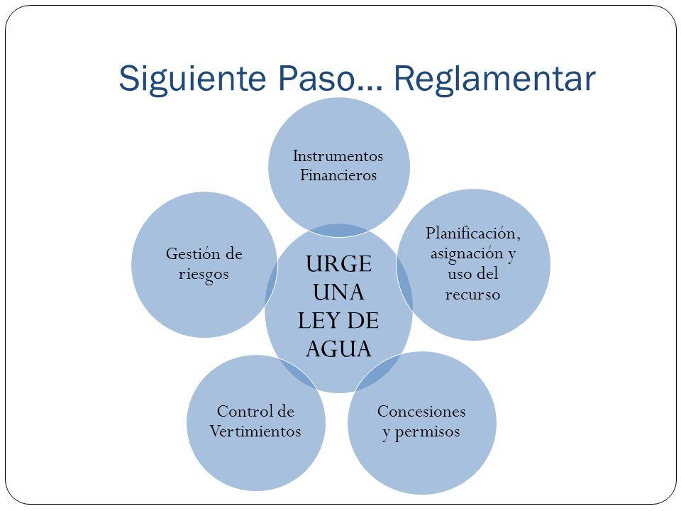 Siguiente Paso… Reglamentar URGE UNA LEY DE AGUA Instrumentos Financieros Planificación, asignación y uso del recurso Concesiones y permisos Control d