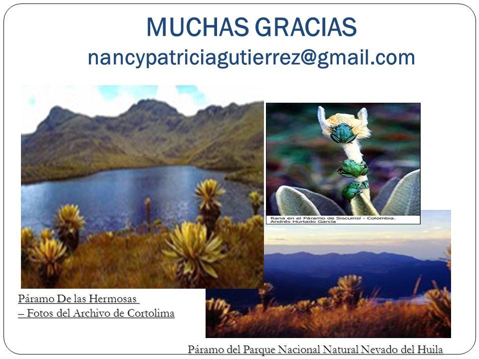 MUCHAS GRACIAS nancypatriciagutierrez@gmail.com Páramo De las Hermosas – Fotos del Archivo de Cortolima Páramo del Parque Nacional Natural Nevado del