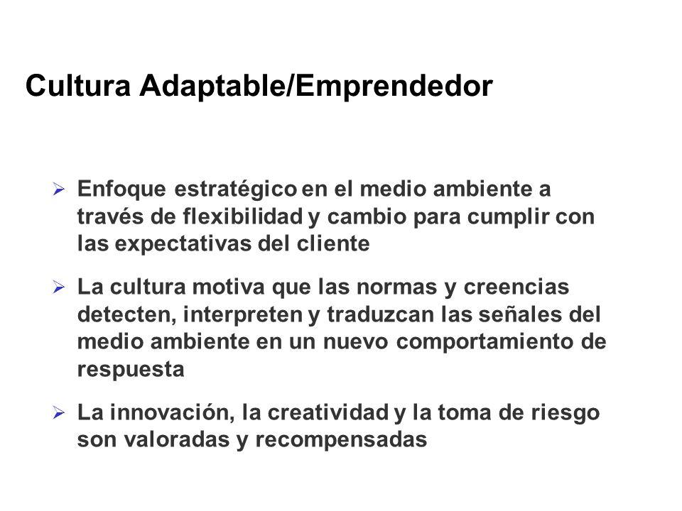 Cultura Adaptable/Emprendedor Enfoque estratégico en el medio ambiente a través de flexibilidad y cambio para cumplir con las expectativas del cliente