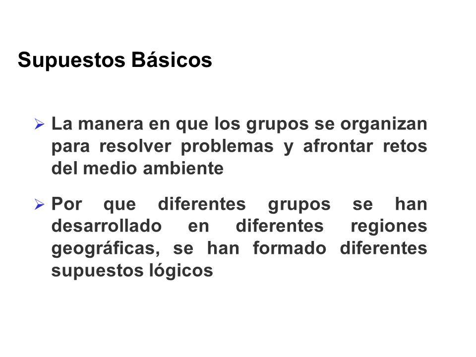 Supuestos Básicos La manera en que los grupos se organizan para resolver problemas y afrontar retos del medio ambiente Por que diferentes grupos se ha